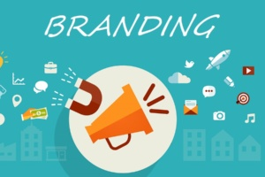 What the Company Branding Process Actually Looks Like in Practice